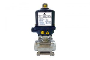 bravo electric actuator with ball valve