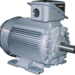 21-FII Series Motors
