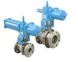 Steam Application Ball Valve